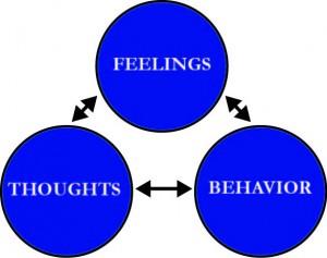 Three Component Model