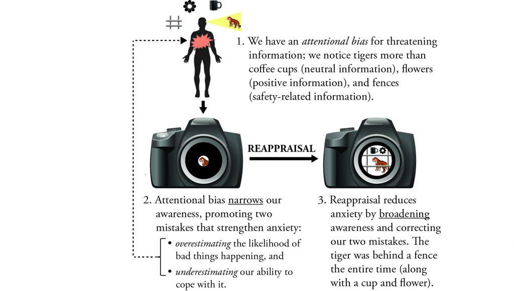 attentional-bias_reappraisal